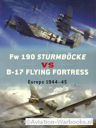 Fw 190 Sturmböcke vs B-17 Flying Fortress